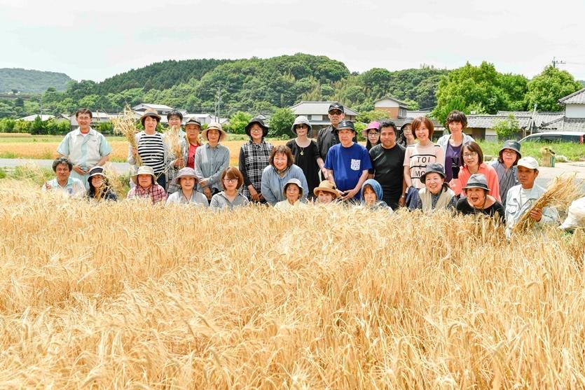 国東半島宇佐地域世界農業遺産推進協議会と連携してニシノホシの麦刈り体験・工場見学ツアーを開催【前編】