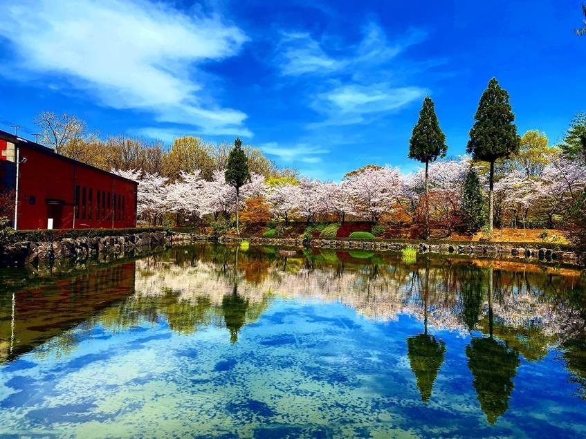 日田という町と共に